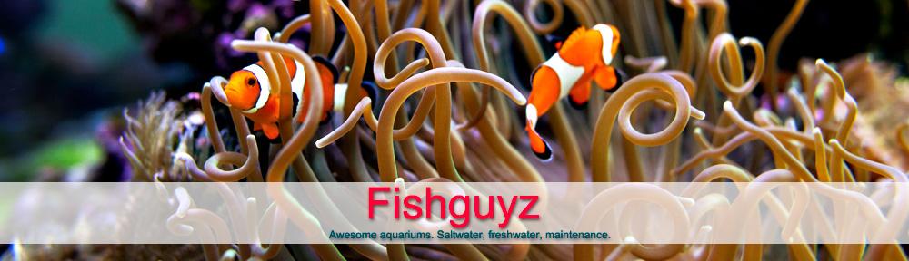 Fishguyz